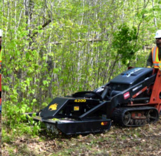 Where to find MOWER, DINGO BRUSH CUTTER in Wayzata